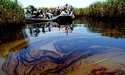 Floating Oil Bioremediation